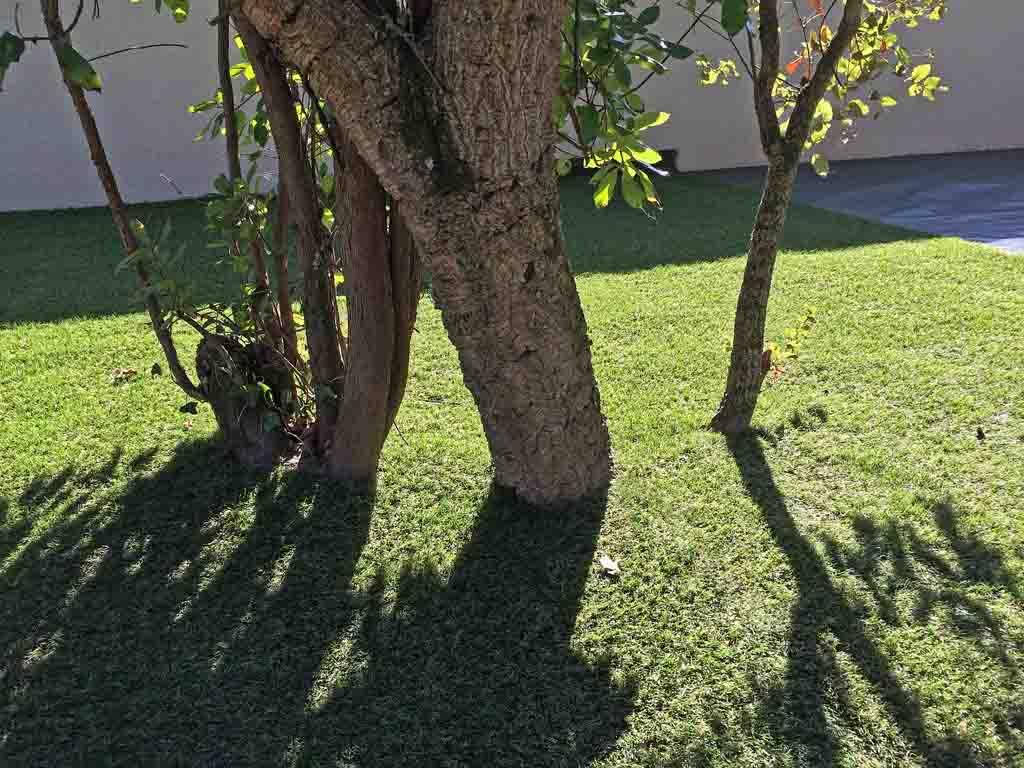 la pelouse artificielle s'adapte à toutes les configurations de jardin